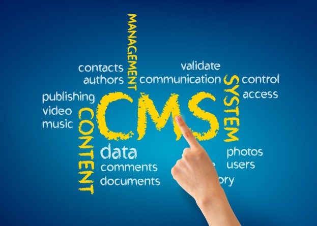 SEO CMS Web Design